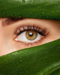 Beautiful Woman with long lashes on the background of a leaf of monstera with water droplets.. Eyelash extension procedure.